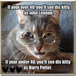 Cat-Lennon