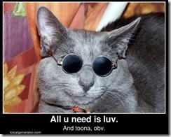 CatWearingGlassesAllYouNeedIsLove