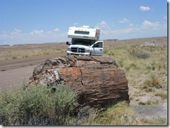 P&N-Petrified-Forest (Small)