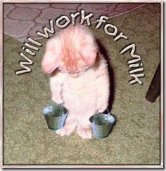 cat-work-for-milk (Small)