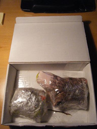 2010_01040012.JPG