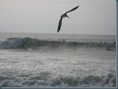 Puerto Again (19)