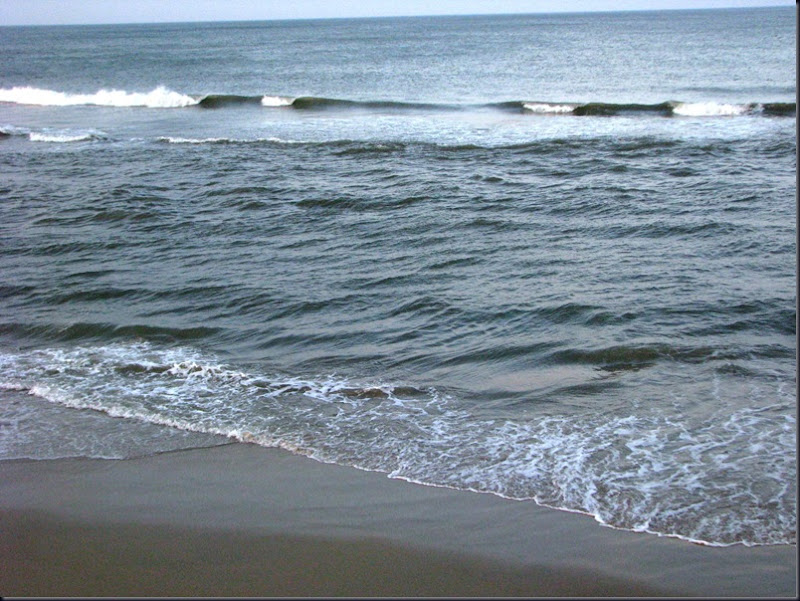 Virginia Beach 068