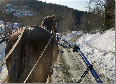 2010-pondus-22feb_01