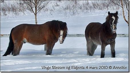 2010-mars-blessen-jenta_03