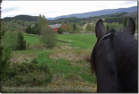 2010-26mai_ardvinna