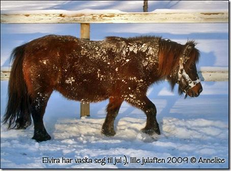 2009-lillejulaften_03