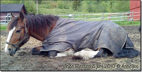 2010-blessen-08juni_01