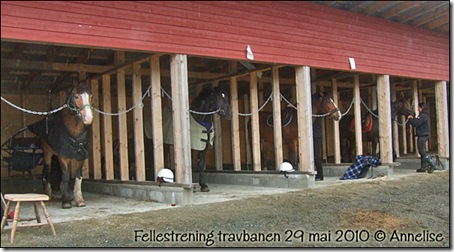 2010-29mai-trening_01