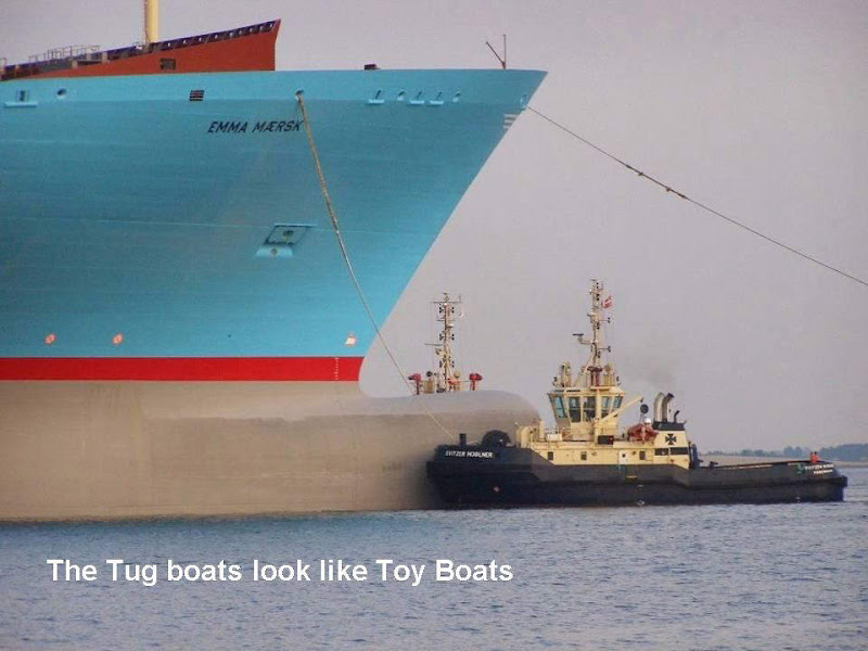 World's Largest Ship