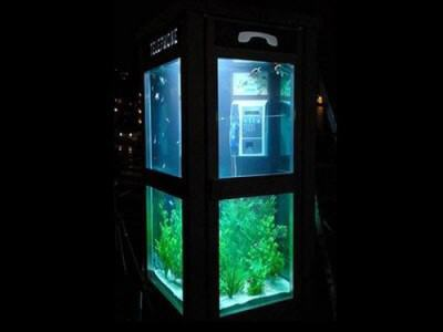 BEAUTIFUL CREATIVITY - Aquarium Telephone Booth in France