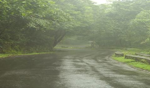 Beautiful Konkan during rainy days