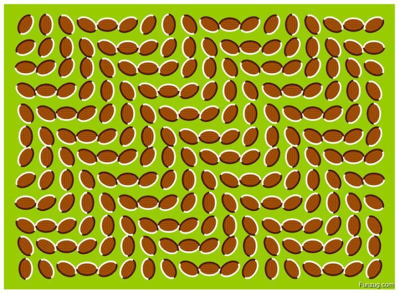 One Of The Best Optical Illusions