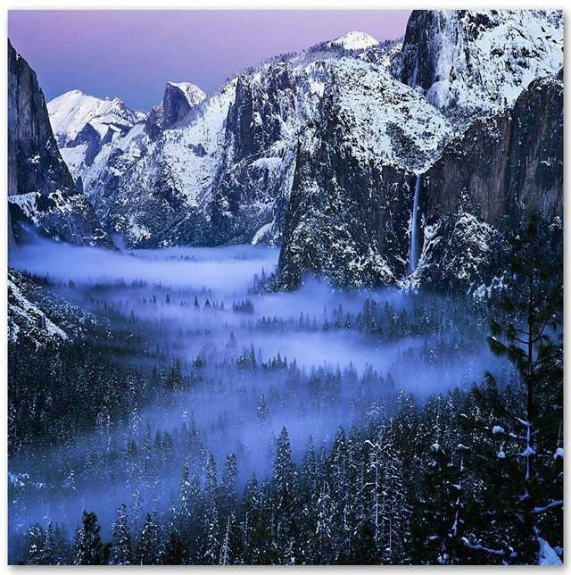 Serene Nature Photos