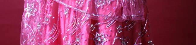 Embroidered Lehnga Choli for Gals