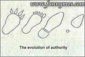 $ .,.,. funniest evolution pics .,.,. $