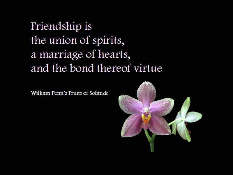 Friendship Cards: Friendship is the union of spirits, a marriage of hearts and the bond thereof virtue