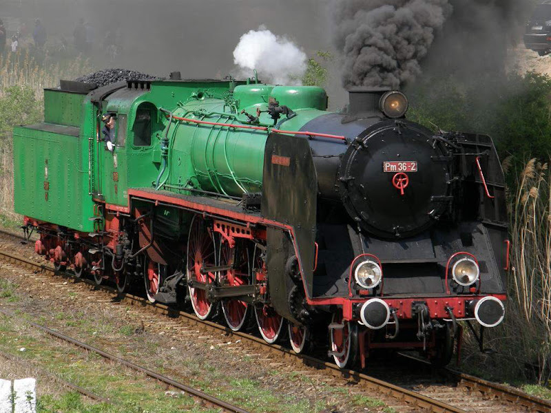 Steam Engine Trains