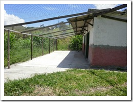Granja Florestal - Cres-Sendo 02 11 041