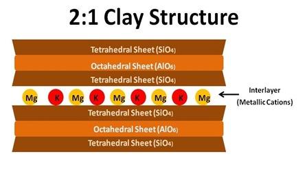 2-1 Structure cut