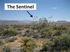 The Sentinel Caption