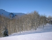Aspen 12 23 03