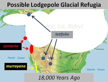 refugia map