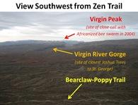 Zen View SW