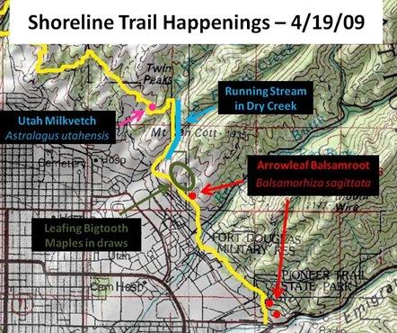 Shoreline Map 4 19 09