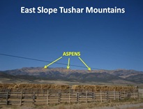 Tushar East Slope