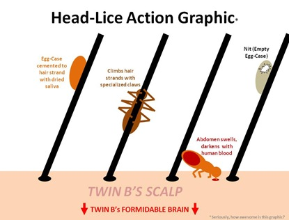 Lice Action