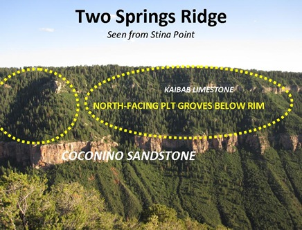 Two Springs Ridge View
