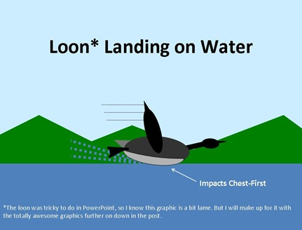 Loon Landing