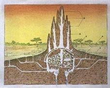 termite mound schematic