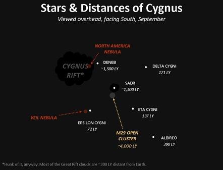 Cygnus1