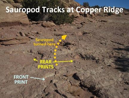 S Tracks turn
