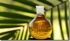 aceites-comestibles-y-biodiesel-de-aceite-de-las-existencias-para-la-venta-112160z1