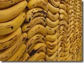 Cambures bananos