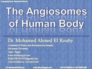 angiosome of human body