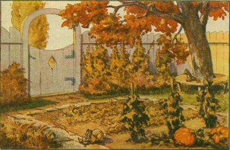 fall-arrival