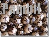 pambil