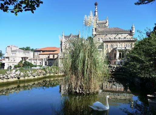 25-  Palácio de Buçaco-lago em frente com cisne