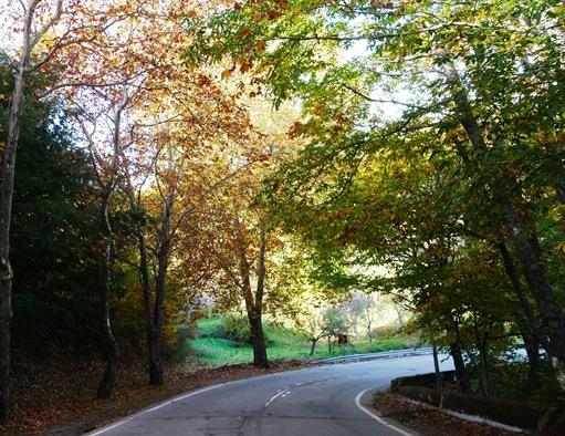 Fundão - estrada para Alpedrinha 2