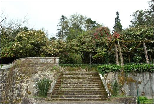Buçaco - jardim do palácio - escadaria