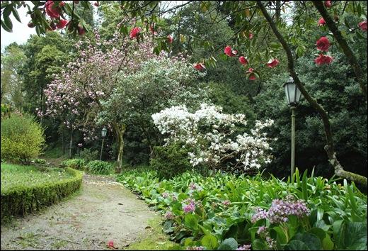 Buçaco - jardim do palácio 18