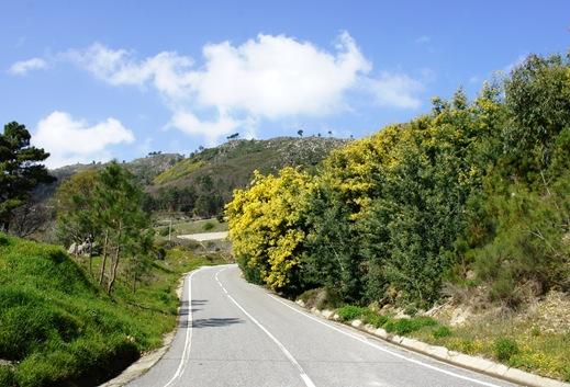 minosa - estrada