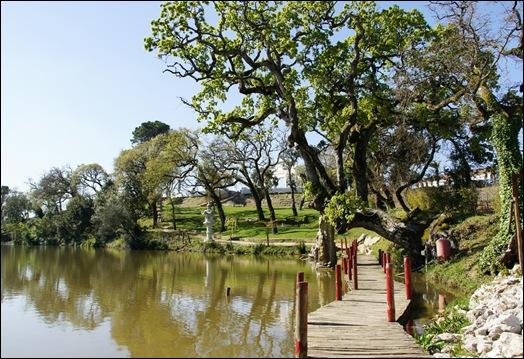 Buddha Eden - lago ponte 1
