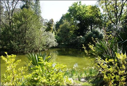 jardim serralves  - lago 1