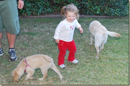 12-25 Keelie and Dogs 2