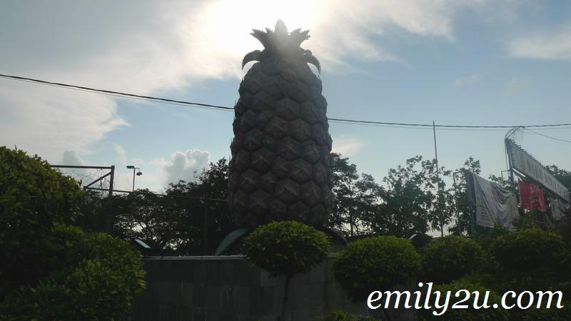 pineapple Pekan Nanas